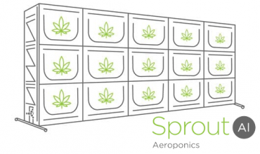 Sprout AI